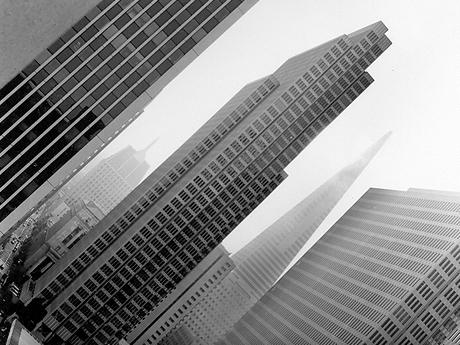 San Francisco skyline. Photo by Leah Snyder.