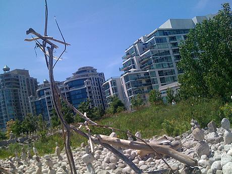 The beach, image 5