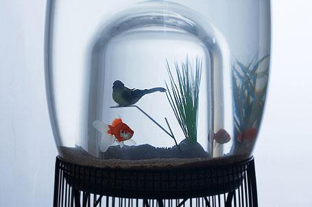 French design company Specimen's Fish Bowl/Aquarium.